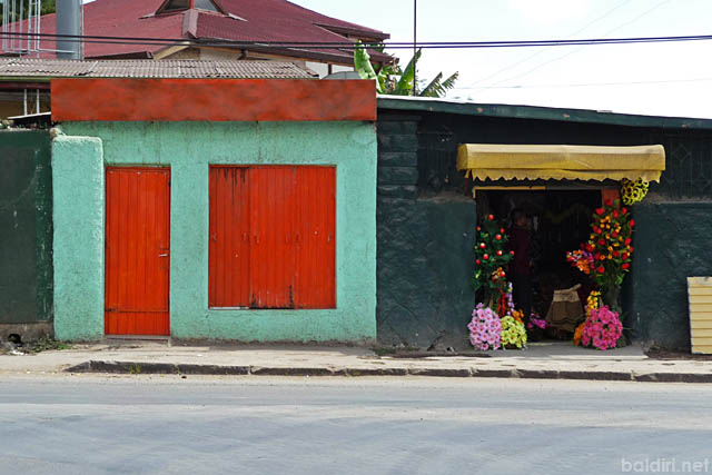 baldiri : addis abeba meskel flower road : baldiri09120601
