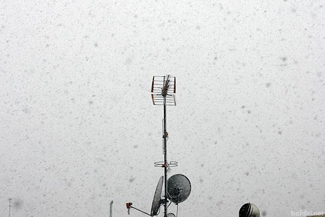 baldiri : no es temps de neu : baldiri100309