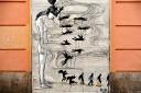 baldiri : homes i ocells : baldiri100412