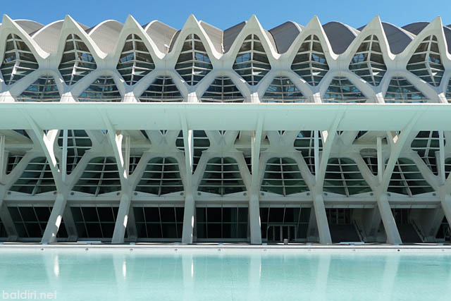 baldiri : museu de les ciencies principe felipe : baldiri100621